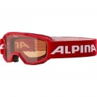 Goggle ALPINA PINEY